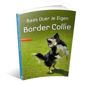 Op deze foto zie je de bonus: Baas over je eigen border collie van het ebook Border Collie Geheimen