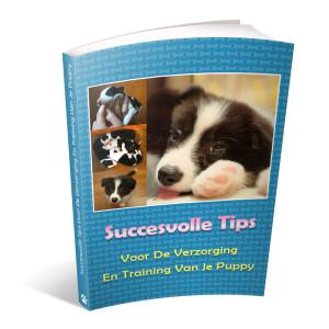 Op deze foto zie je de bonus: Puppy tips van het ebook Border Collie Geheimen