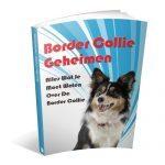 Border Collie Geheimen Handboek