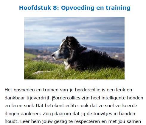 Op deze foto zie je hoofdstuk 8: Opvoeding en training van het Border Collie Geheimen Handboek